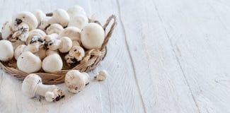 Champignon-Pilze auf einer Tabelle Lizenzfreies Stockbild