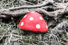 Champignon rouge Photographie stock