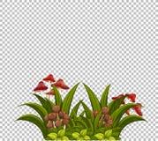 Champignon sur le calibre de pelouse illustration de vecteur