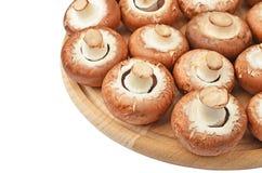Champignon (True mushroom) on wooden board Stock Image