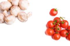 Champignon und charry Tomaten stockfotos