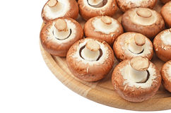 Champignon (wahrer Pilz) auf hölzernem Brett Stockbild