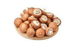 Champignon (wahrer Pilz) auf hölzernem Brett Lizenzfreies Stockbild