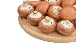 Champignon (wahrer Pilz) auf hölzernem Brett Stockbilder