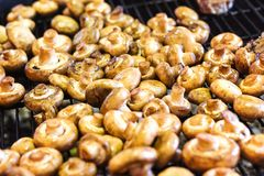 Champignon white mushrooms grilled on grill or BBQ steam and small drops of water. Cooking mushrooms on the grill. Portobello mush Stock Photos