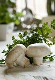 champignonchampinjoner Arkivfoton