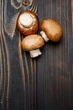 Champignonpaddestoel op houten achtergrond Stock Afbeeldingen