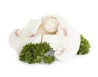 Champignonpaddestoelen op wit worden geïsoleerd dat Royalty-vrije Stock Afbeelding