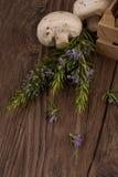 Champignons в деревянной коробке Стоковые Фотографии RF