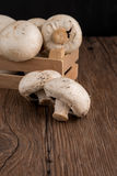 Champignons в деревянной коробке Стоковые Изображения