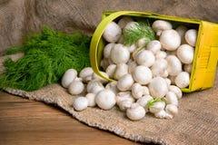 Champignons в корзине, вместе с овощами на таблице Стоковая Фотография