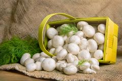 Champignons в корзине, вместе с овощами на таблице Стоковое фото RF