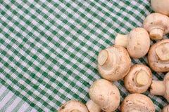 Champignons грибов белизны лежат на зеленом полотенце, месте для текста, предпосылки Стоковое Изображение