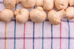 Champignons грибов белизны лежат на полотенце шотландки, устанавливают для текста Стоковые Изображения RF