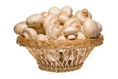 champignons корзины деревянные Стоковая Фотография