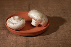 Champignons. Lie in a ceramic bowl Stock Photography