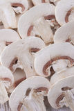 Champignons Photo stock