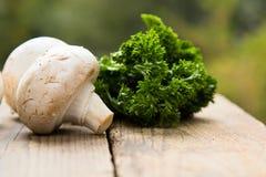 Champignons avec des légumes sur un fond en bois image libre de droits