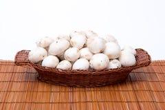 Champignons blancs dans un panier d'isolement sur le blanc Photographie stock libre de droits