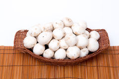 Champignons blancs dans un panier d'isolement sur le blanc Image stock