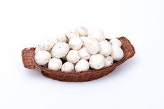 Champignons blancs dans un panier d'isolement sur le blanc Photo stock