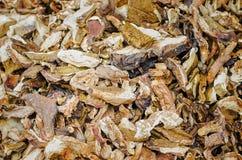 Champignons comestibles secs et coupés en tranches photos stock