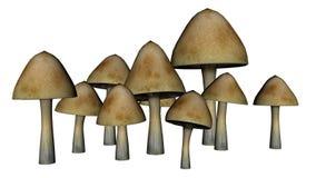 Champignons communs - 3D rendent Photos stock