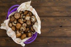 Champignons crus frais sains de Bella de bébé photos stock