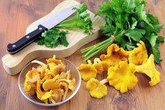 Champignons d'or de chanterelle et ingrédients frais de persil à la Co photos stock