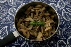 Champignons dans un pot photos libres de droits