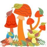Champignons de conception de style d'art de champignon d'agaric de champignon les différents dirigent le chapeau de rouge d'illus Photographie stock