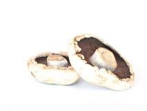 champignons de couche Photographie stock libre de droits