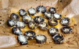 Champignons de couche bourrés avec du fromage photos stock