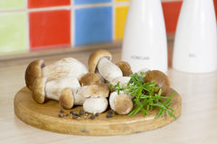 Champignons de couche de boletus sur la cuisine Photo libre de droits