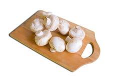 Champignons de couche de champignon de paris Photographie stock libre de droits