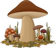 Champignons de couche de forêt illustration de vecteur