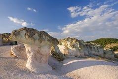 Champignons de couche en pierre Photographie stock libre de droits