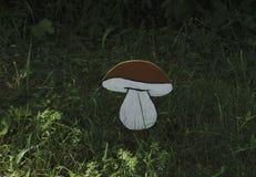 Champignons de couche est riche en champignons Les champignons sont de différents types Photo stock