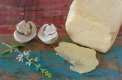 Champignons de couche et fromage Photos libres de droits