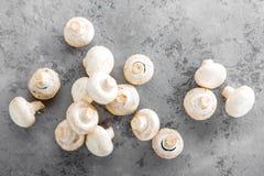 Champignons de couche frais Champignons crus sur le conseil en bois Champignons de paris Photo stock