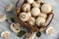 Champignons de couche frais dans un panier Photo libre de droits
