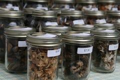 Champignons de couche gastronomes Photos libres de droits