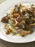 Champignons de couche sauvages faits sauter en beurre d'ail Photos stock