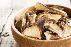 Champignons de couche secs de Porcini Photos stock