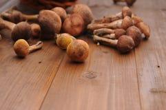 Champignons de couche sur une table en bois Image stock