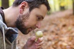 Champignons de cueillette d'homme Photographie stock libre de droits