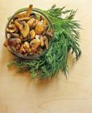 champignons de paris frits Photo libre de droits