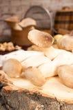 Champignons de roi de champignons d'huître sur le fond en bois préparation Photo libre de droits