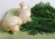Champignons and dill Stock Photography