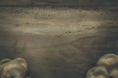 Champignons en bois de fond photographie stock libre de droits